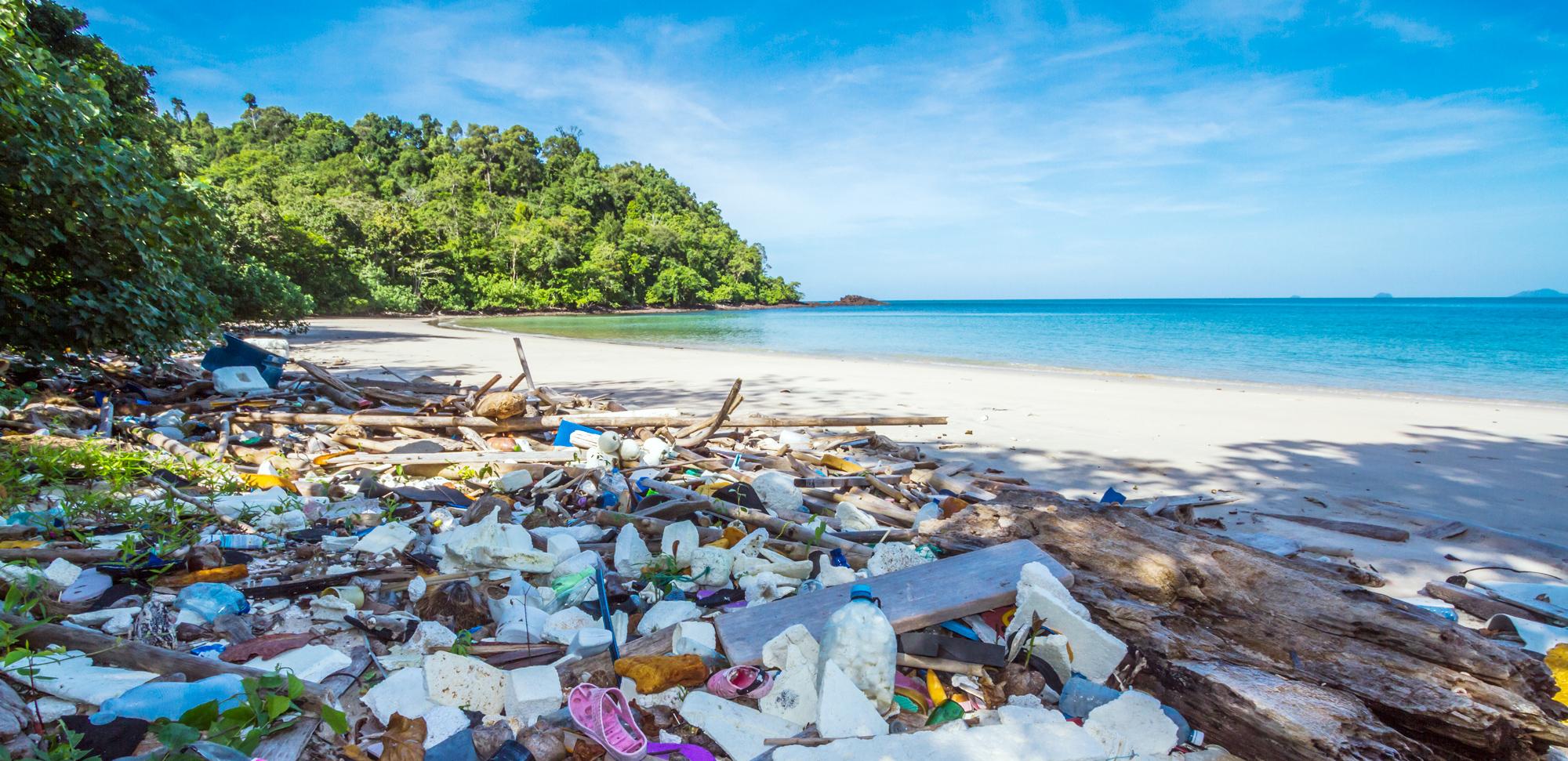 plastikmüll das projekt des wwf deutschland in vietnam