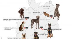 German Dog Breeds