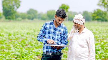 Indian farmer with an advisor in a cotton field