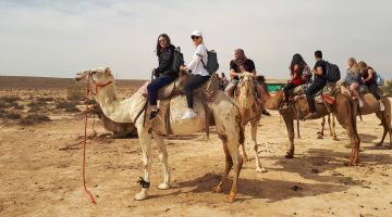 Highlight for the pupils: camel riding on the Egyptian border