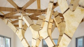 MycoTree – a self-supporting structure made of fungal mycelium and bamboo
