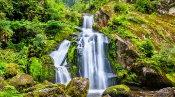 Nature is flourishing: waterfall in the Black Forest
