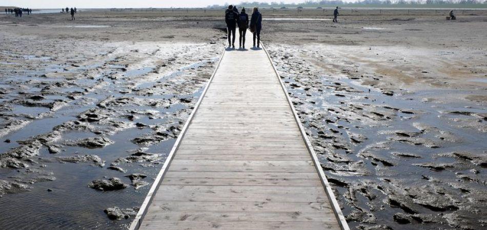 Schutz des Wattenmeeres