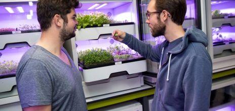 Bright future in vertical farming