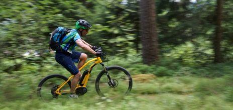 Biking in Black Forest booms