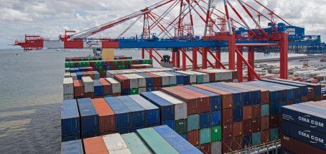 Experts raise growth forecast