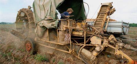 Sub-par harvests in Germany