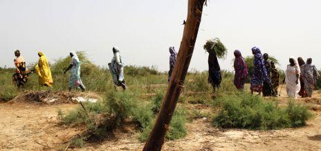 Menschen in der Sahel-Region