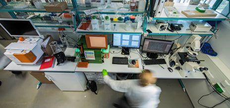 Immer mehr Patente kommen von Forschern mit Migrationshintergrund.