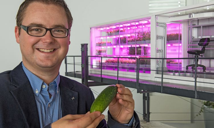 Eden-ISS: Forscher Paul Zabel will bald Gurken von der Antarktis ernten.Researcher Paul Zabel plans to harvest cucumbers from the Antarctic soon.