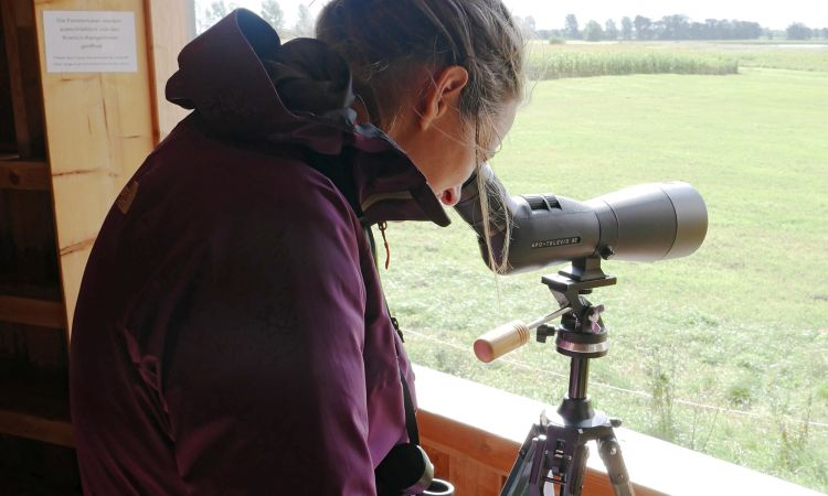 Nature studies come to life: Young people observe the birds with professional equipment
