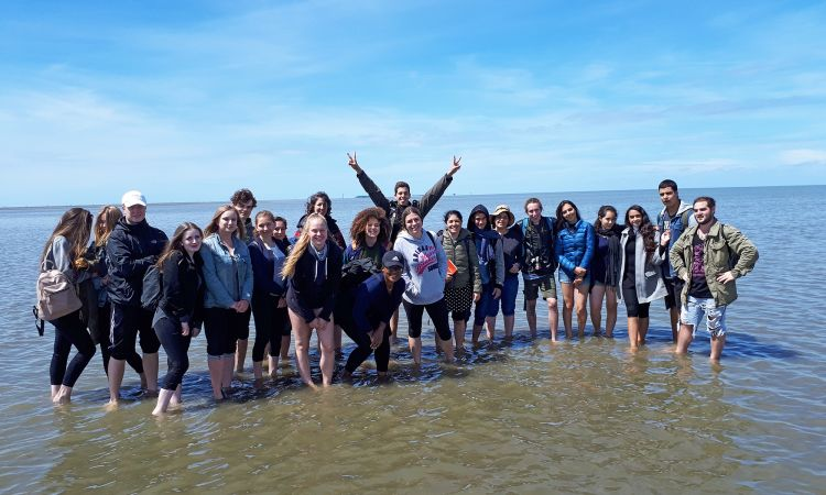 Exchange of contrasts: Israeli pupils hiking on the mud flats...