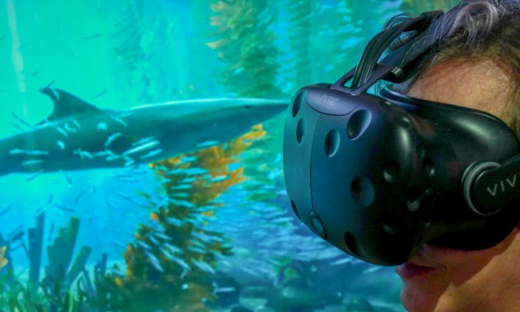 VR goggles enable visitors to immerse themselves fully in 3D worlds.