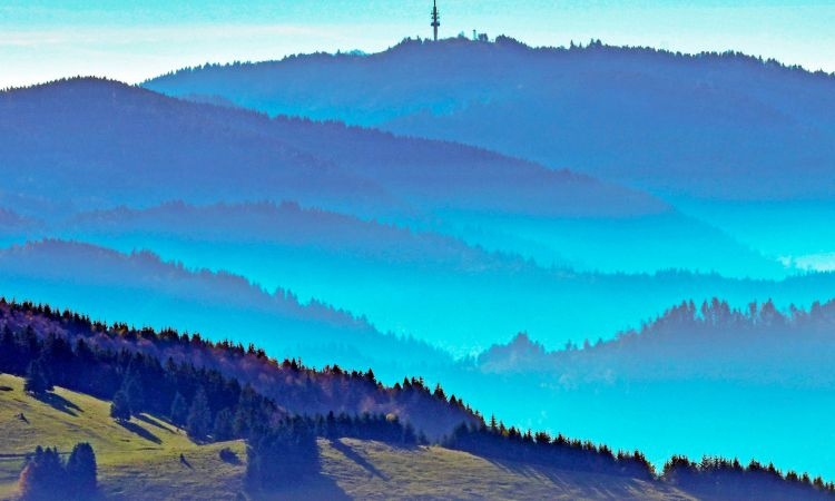 Romantic Black Forest landscape