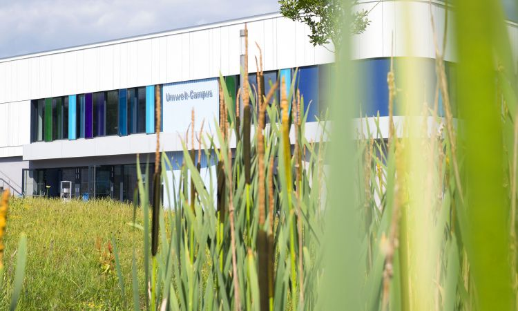 The Environmental Campus Birkenfeld is a model for sustainable structures.
